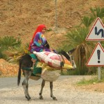 Morocco – Chaos and Coconut Macaroons