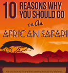 10 Reasons you Should Go on an African Safari