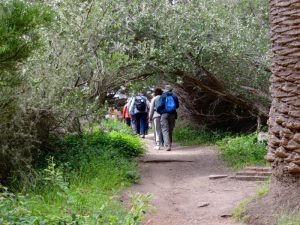 Hiking and bird watching in the Fitzgerald Marine Reserve, California