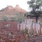 Australia – The Red Centre